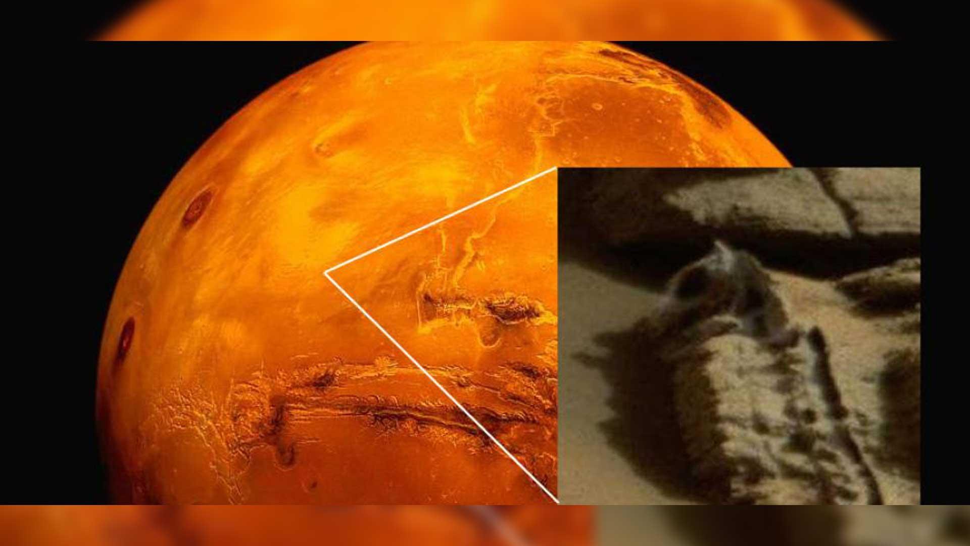 ¿Es esto un fósil de animal captado por el róver Curiosity?