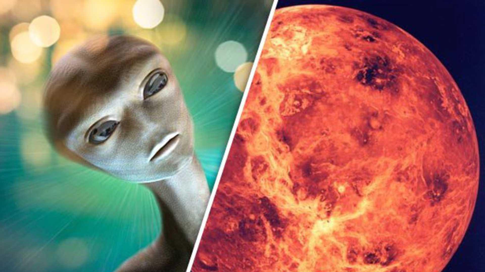 Un estudio financiado por la NASA asegura que es muy probable que en Venus haya vida