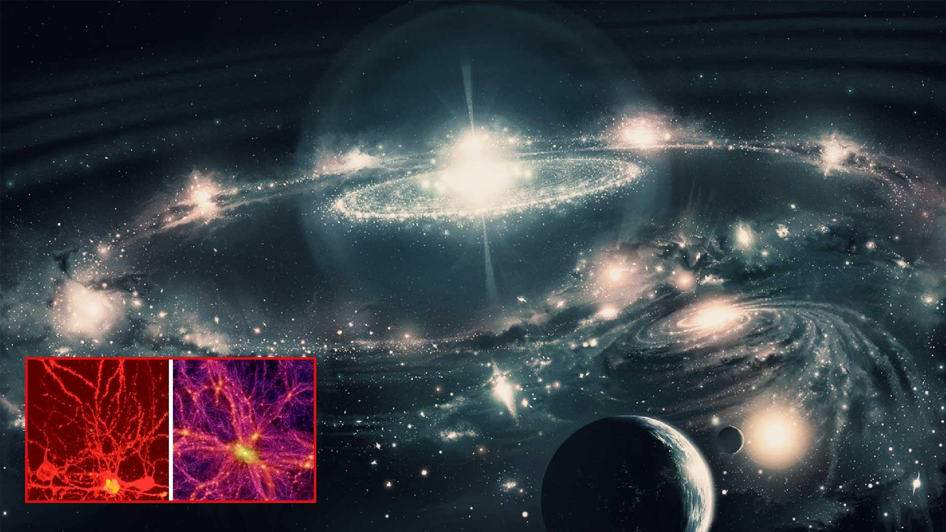 Esta es la evidencia que explica cómo el Universo puede tratarse de un gigante organismo vivo