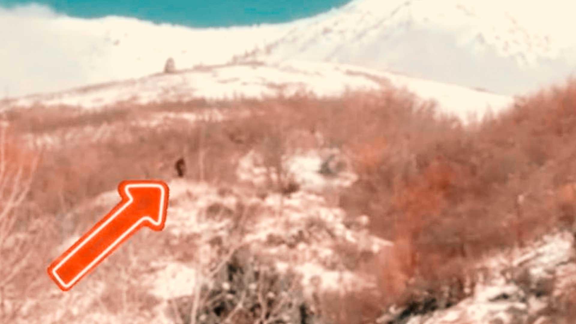Este vídeo muestra un nuevo avistamiento de BigFoot en Utah, EE.UU