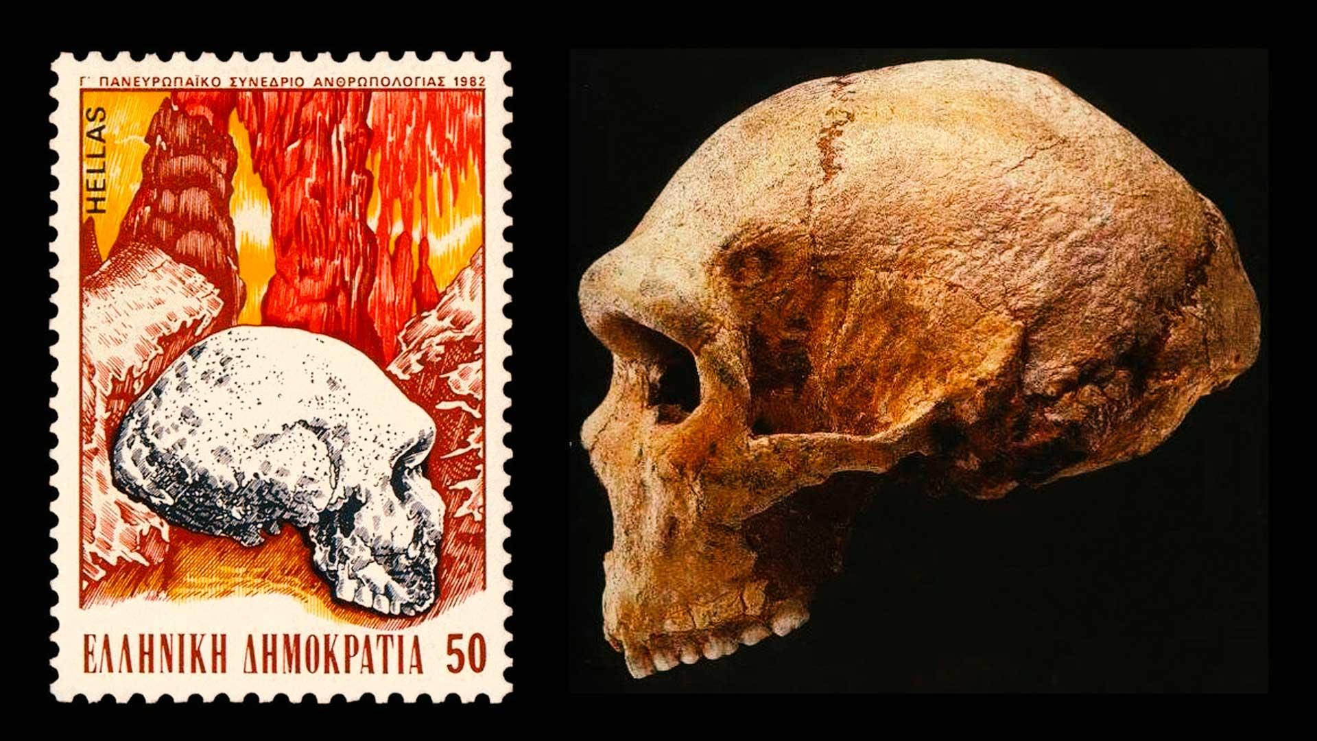 La Cueva de Petralona, otra vez la historia contradice los estudios actuales