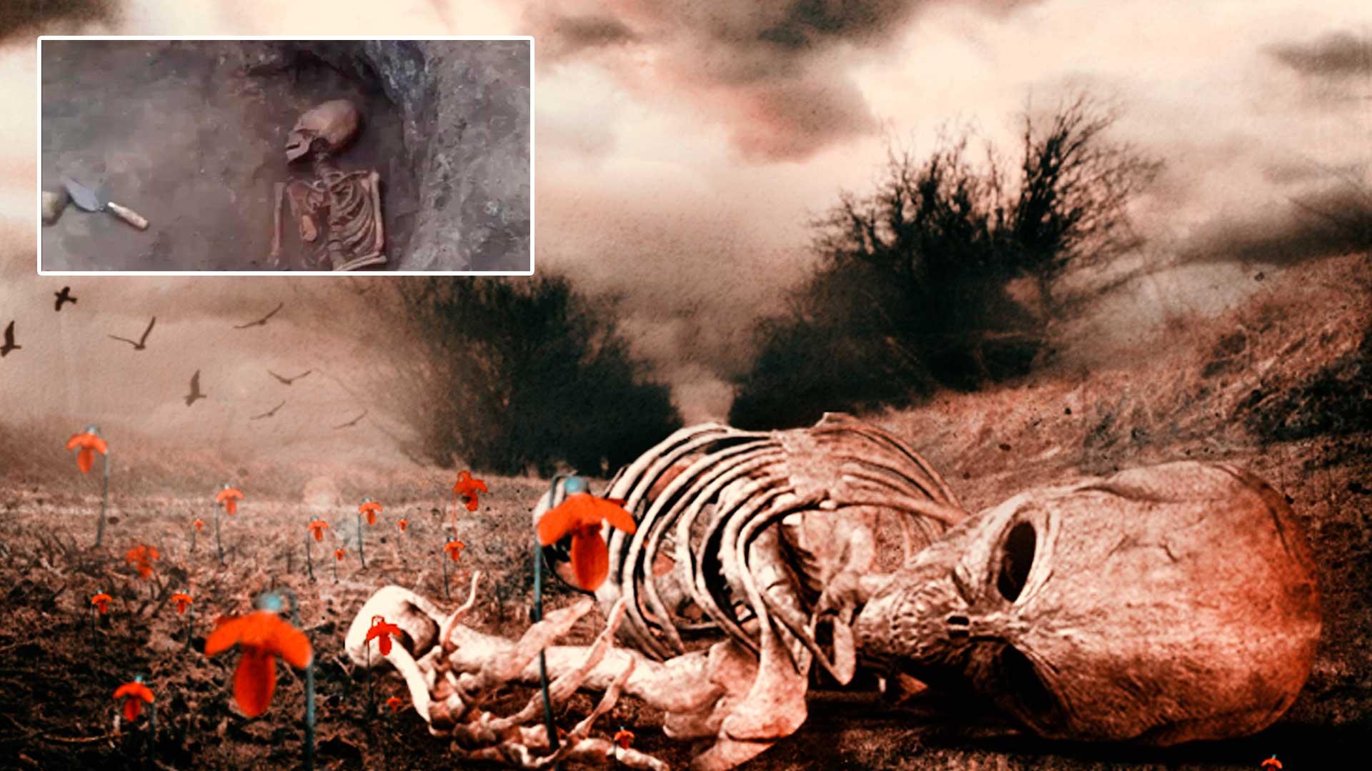 ¿Es este el verdadero esqueleto de una hembra alienígena?