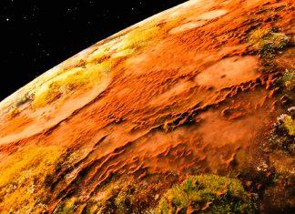 Científicos indios hallan hongos vivos en Marte