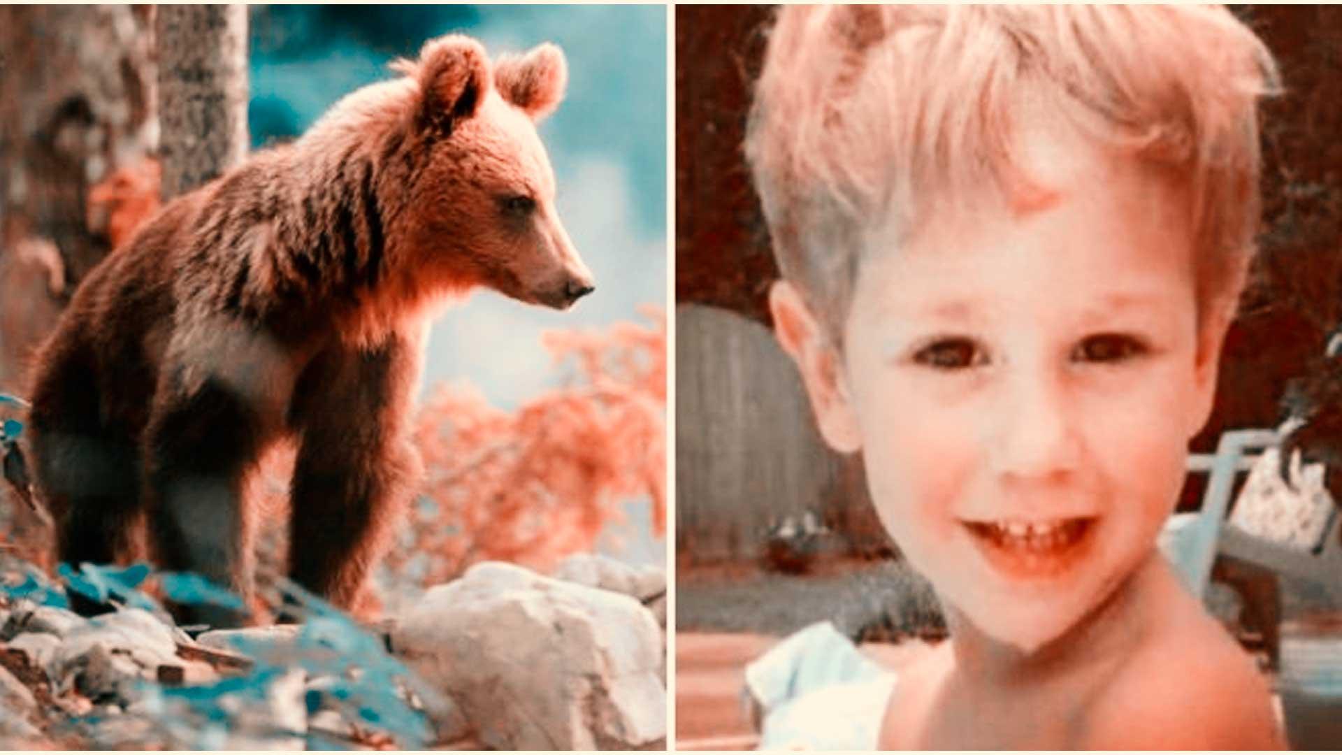 Niño se pierde en el bosque 3 días y sobrevive gracias a un oso
