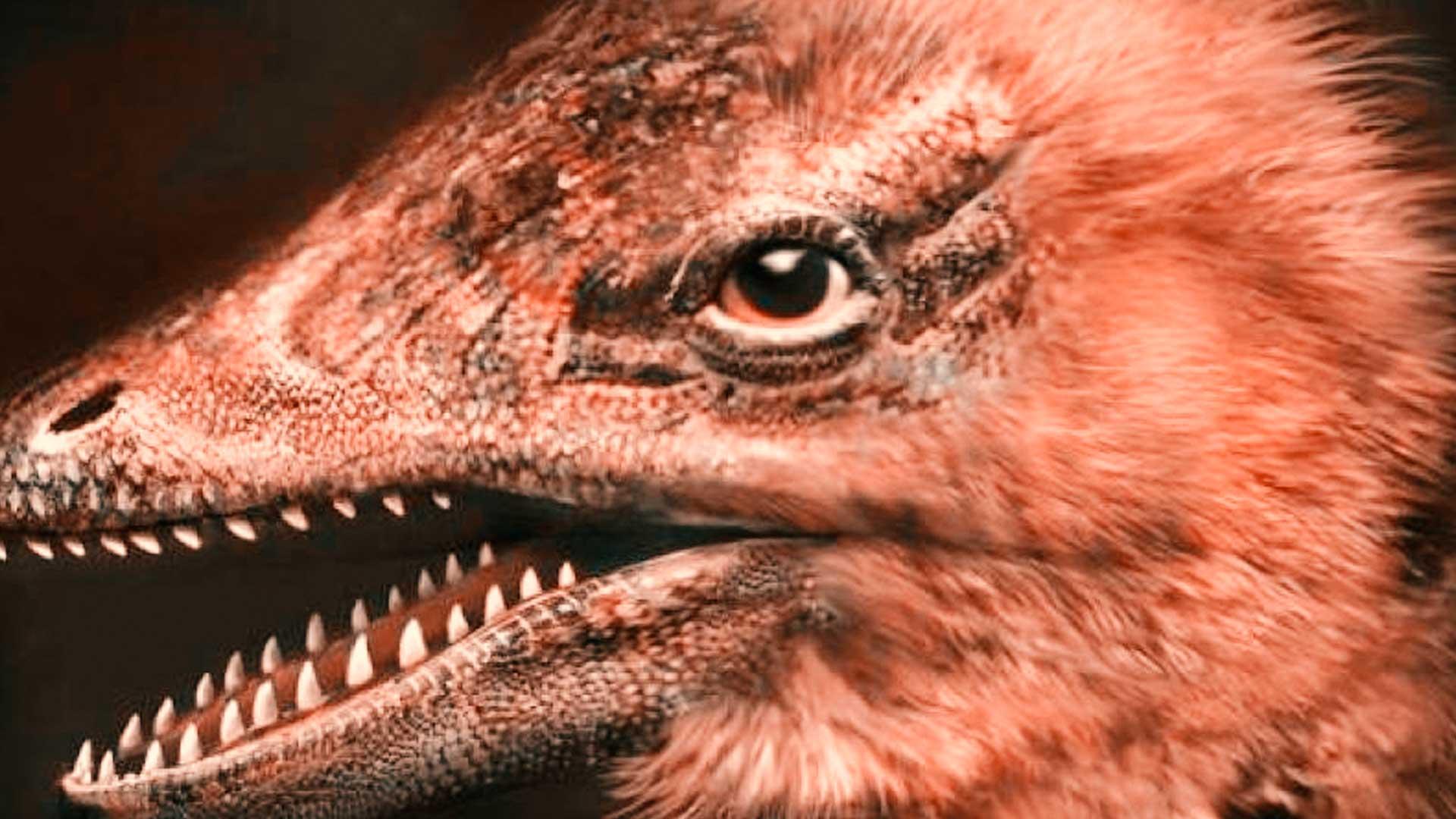 Científicos crean accidentalmente embriones de pollo con cara de dinosaurios