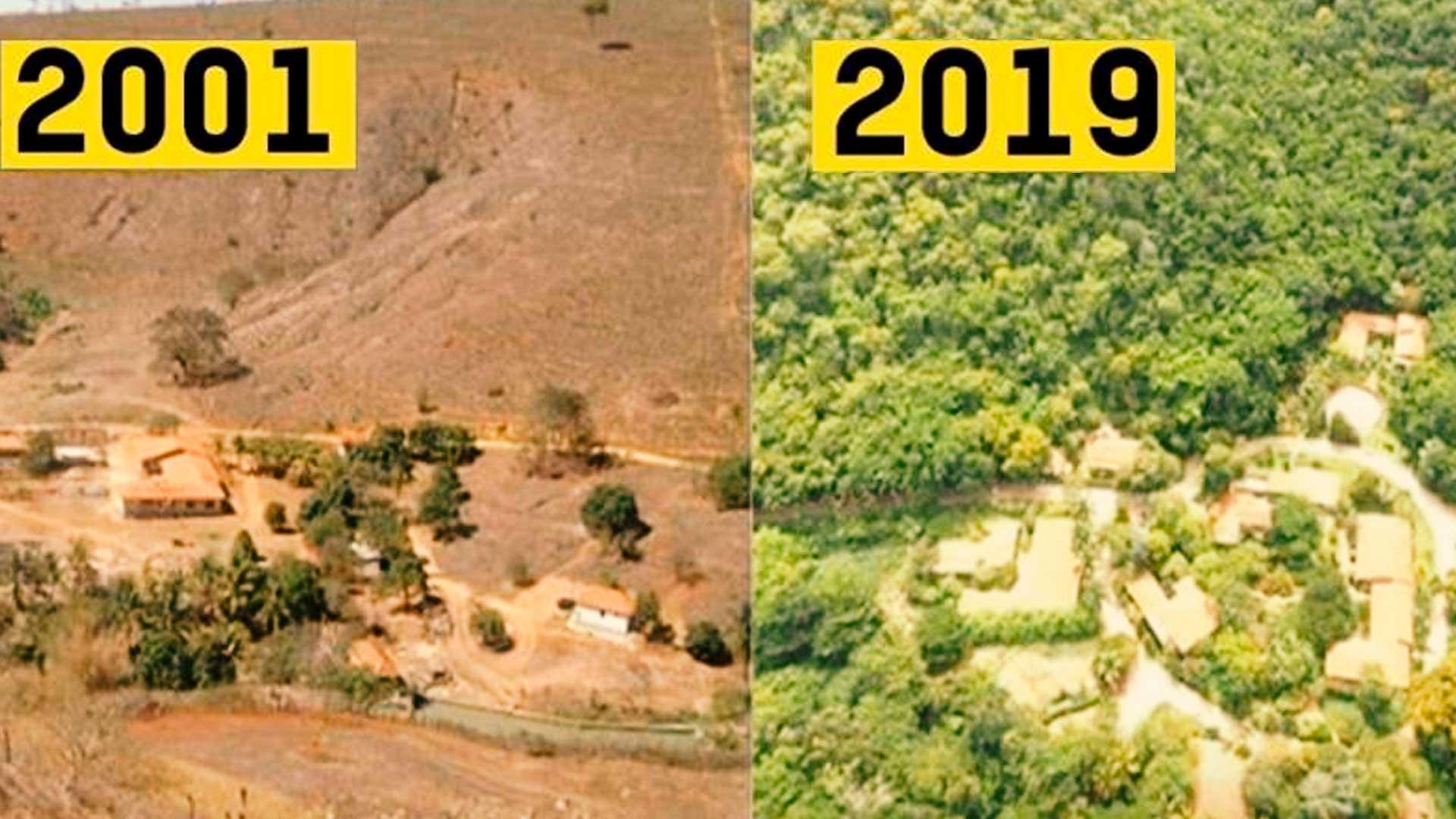 Este fotógrafo brasileño muestra increíble proyecto de reforestación con más de 2,5 millones de árboles
