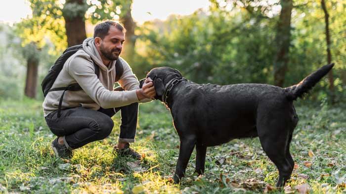 Respeto a los animales, la nueva asignatura en colegios de España
