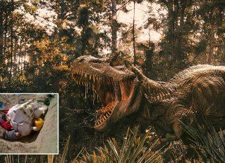 Hallan en Canadá el Tiranosaurio Rex más grande de todos los tiempos