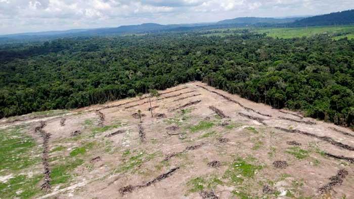 Brasil quiere acabar con la Amazonia y crear una zona de extracción minera masiva