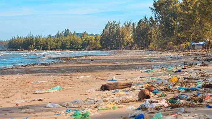 Según la ONU ya hemos perdido una gran parte de la naturaleza y lo que queda está en decadencia