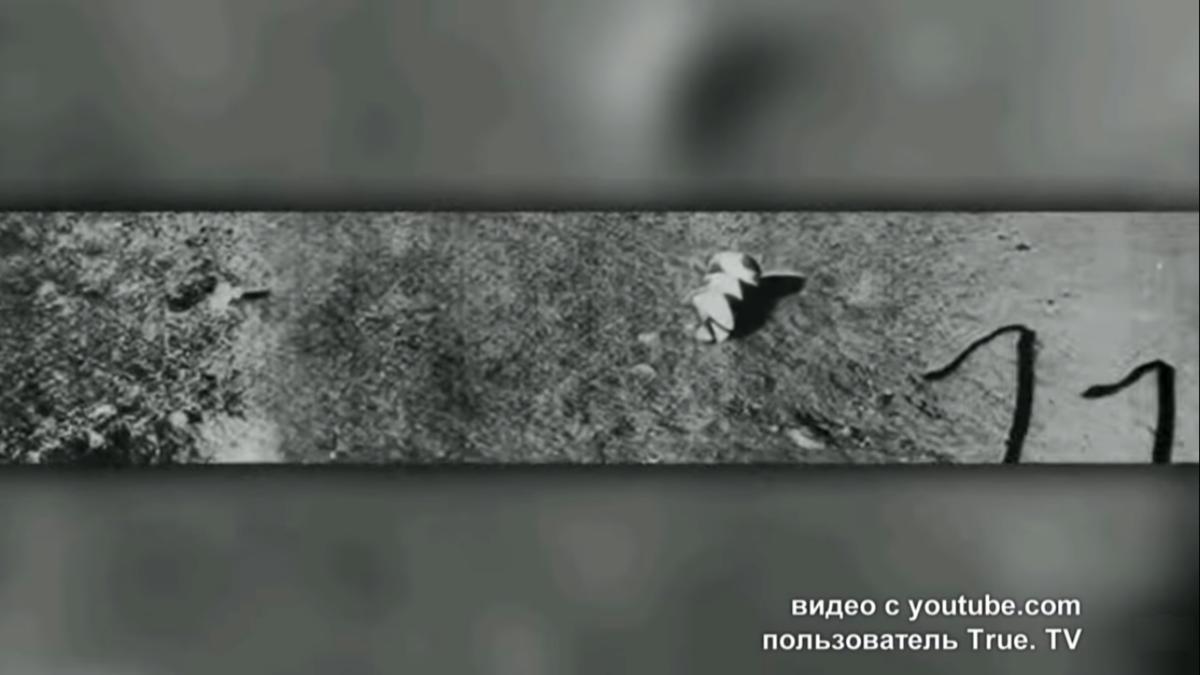 Explorando un extraño satélite: feroces discusiones de científicos soviéticos sobre el propósito de la luna 5