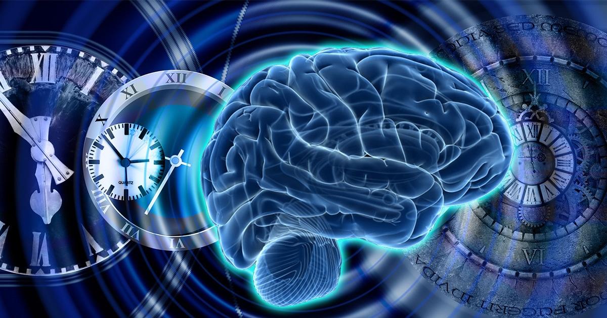 Nuestros cerebros son capaces de «viajar en el tiempo mental», afirma un estudio reciente