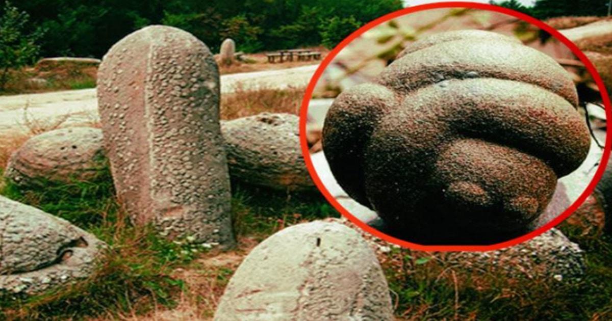 Extrañas «piedras vivas» encontradas en Rumania: crecen y pueden moverse, respirar y reproducirse